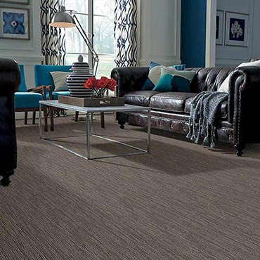 Anso® Nylon Carpet in Collinsville, IL
